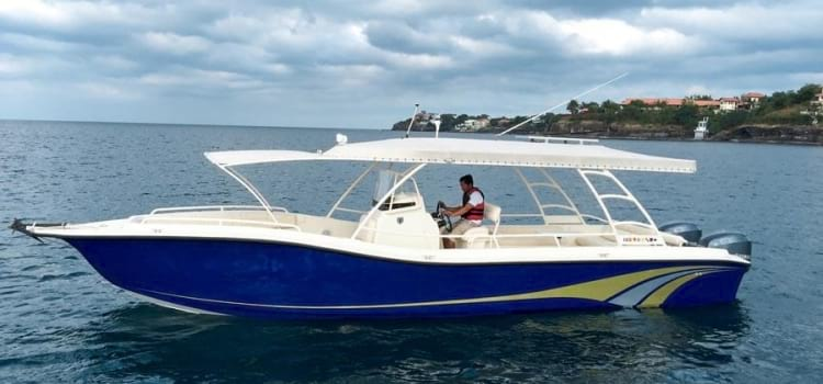 Tronqued Boats Interceptor 320RS Open Deck